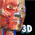 Anatomy Learning 3D apk apps free download
