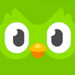 Duolingo Learn Languages apk apps free download